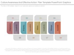Culture Awareness And Effective Action Plan Template Powerpoint Graphics