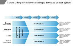 Culture Change Frameworks Strategic Executive Leader System
