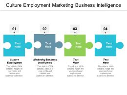 Culture Employment Marketing Business Intelligence Public Relations Communication Cpb