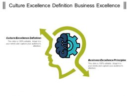 Culture Excellence Definition Business Excellence Principles Networks Excellence Cpb
