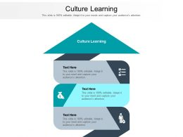 Culture Learning Ppt Powerpoint Presentation Gallery Deck