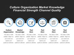 Culture Organization Market Knowledge Financial Strength Channel Quality