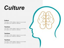 Culture Ppt Powerpoint Presentation Layouts Portrait Cpb