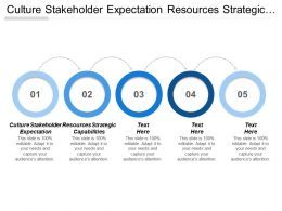 Culture Stakeholder Expectation Resources Strategic Capabilities Globalization Revolution