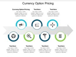Currency Option Pricing Ppt Powerpoint Presentation Infographics Templates Cpb