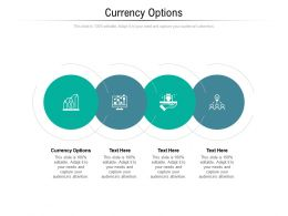 Currency Options Ppt Powerpoint Presentation Styles Rules Cpb