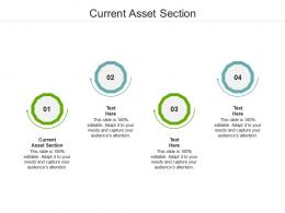 Current Asset Section Ppt Powerpoint Presentation Infographics Gridlines Cpb