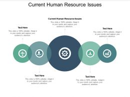 Current Human Resource Issues Ppt Powerpoint Presentation Show Outline Cpb