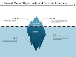 Current Market Opportunity And Potential Expansion Through Iceberg Structure