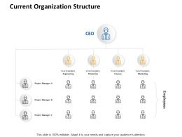 Current Organization Structure Ppt Powerpoint Presentation Layouts