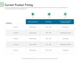 Current Product Pricing Ppt Powerpoint Presentation File Gallery