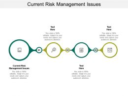 Current Risk Management Issues Ppt Powerpoint Presentation Gallery Example Cpb