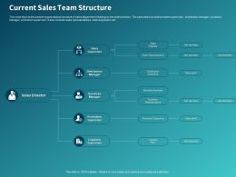 Current Sales Team Structure Ppt Powerpoint Presentation Styles Inspiration
