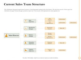 Current Sales Team Structure Representative Ppt Powerpoint Presentation File Rules