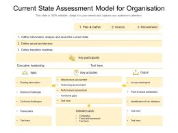 Current State Assessment Model For Organisation