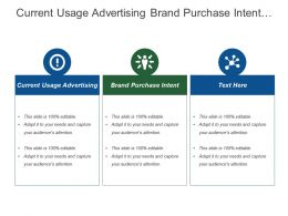Current Usage Advertising Brand Purchase Intent Chief Council