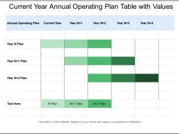 Current Year Annual Operating Plan Table With Values
