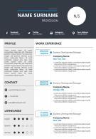 Curriculum Vitae Powerpoint Template For Job Application
