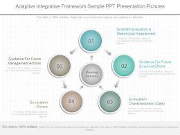 Custom Adaptive Integrative Framework Sample Ppt Presentation Pictures