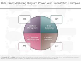 Custom B2b Direct Marketing Diagram Powerpoint Presentation Examples