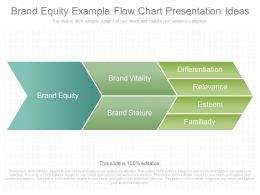 Custom Brand Equity Example Flow Chart Presentation Ideas