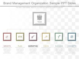 Custom Brand Management Organization Sample Ppt Slides