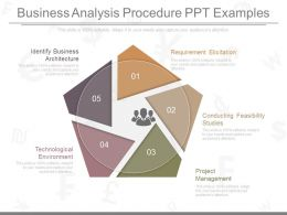 Custom Business Analysis Procedure Ppt Examples
