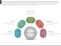 Custom Business Analysis Resource Audit Diagram Powerpoint Presentation