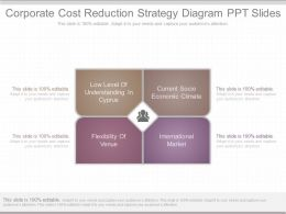 Custom Corporate Cost Reduction Strategy Diagram Ppt Slides