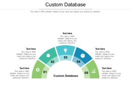 Custom Database Ppt Powerpoint Presentation Infographics Visual Aids Cpb