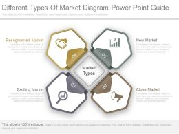 Custom Different Types Of Market Diagram Powerpoint Guide