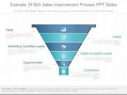 Custom Example Of B2b Sales Improvement Process Ppt Slides
