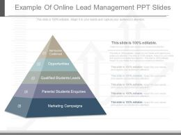 Custom Example Of Online Lead Management Ppt Slides