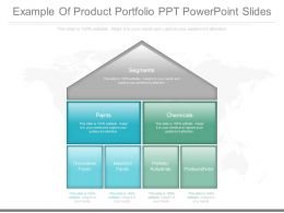 Custom Example Of Product Portfolio Ppt Powerpoint Slides