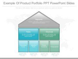 Custom Example Of Product Portfolio Ppt Powerpoint Slides