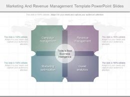 Custom Marketing And Revenue Management Template Powerpoint Slides