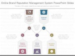 Custom Online Brand Reputation Management System Powerpoint Slides