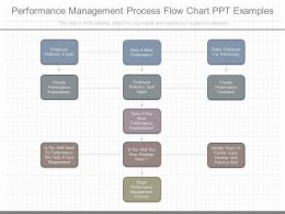 custom_performance_management_process_flow_chart_ppt_examples_Slide01