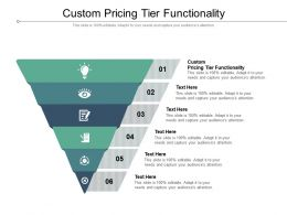 Custom Pricing Tier Functionality Ppt Powerpoint Presentation Styles Show Cpb