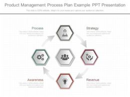 Custom Product Management Process Plan Example Ppt Presentation