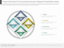 Custom Project Elements For Successful Execution Diagram Presentation Ideas