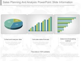 Custom Sales Planning And Analysis Powerpoint Slide Information