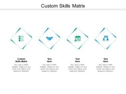 Custom Skills Matrix Ppt Powerpoint Presentation Styles Topics Cpb