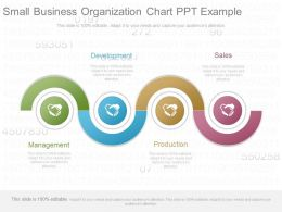Custom Small Business Organization Chart Ppt Example
