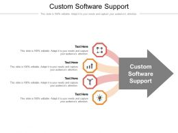 Custom Software Support Ppt Powerpoint Presentation Styles Icons Cpb