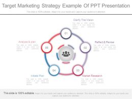 Custom Target Marketing Strategy Example Of Ppt Presentation
