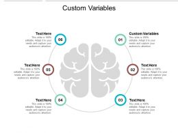 Custom Variables Ppt Powerpoint Presentation Gallery Layout Cpb