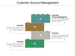 Customer Account Management Ppt Powerpoint Presentation Gallery Slide Portrait Cpb
