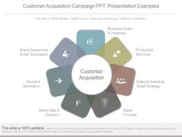 Customer Acquisition Campaign Ppt Presentation Examples