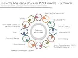Customer Acquisition Channels Ppt Examples Professional